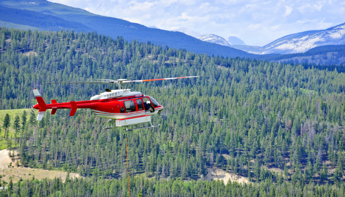 Free-Range Helicopter :: Monday Musing